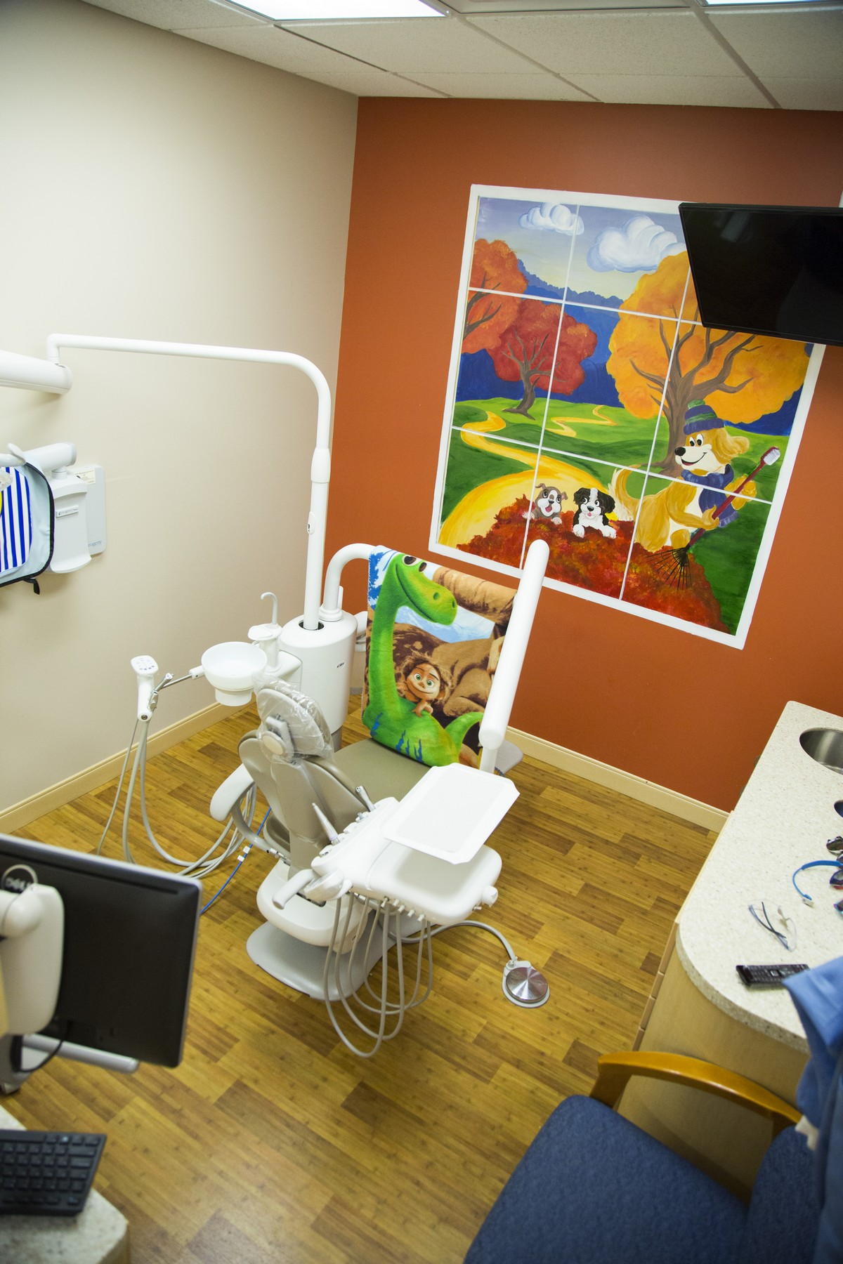 Hudson Valley Pediatric Dentistry Rooms