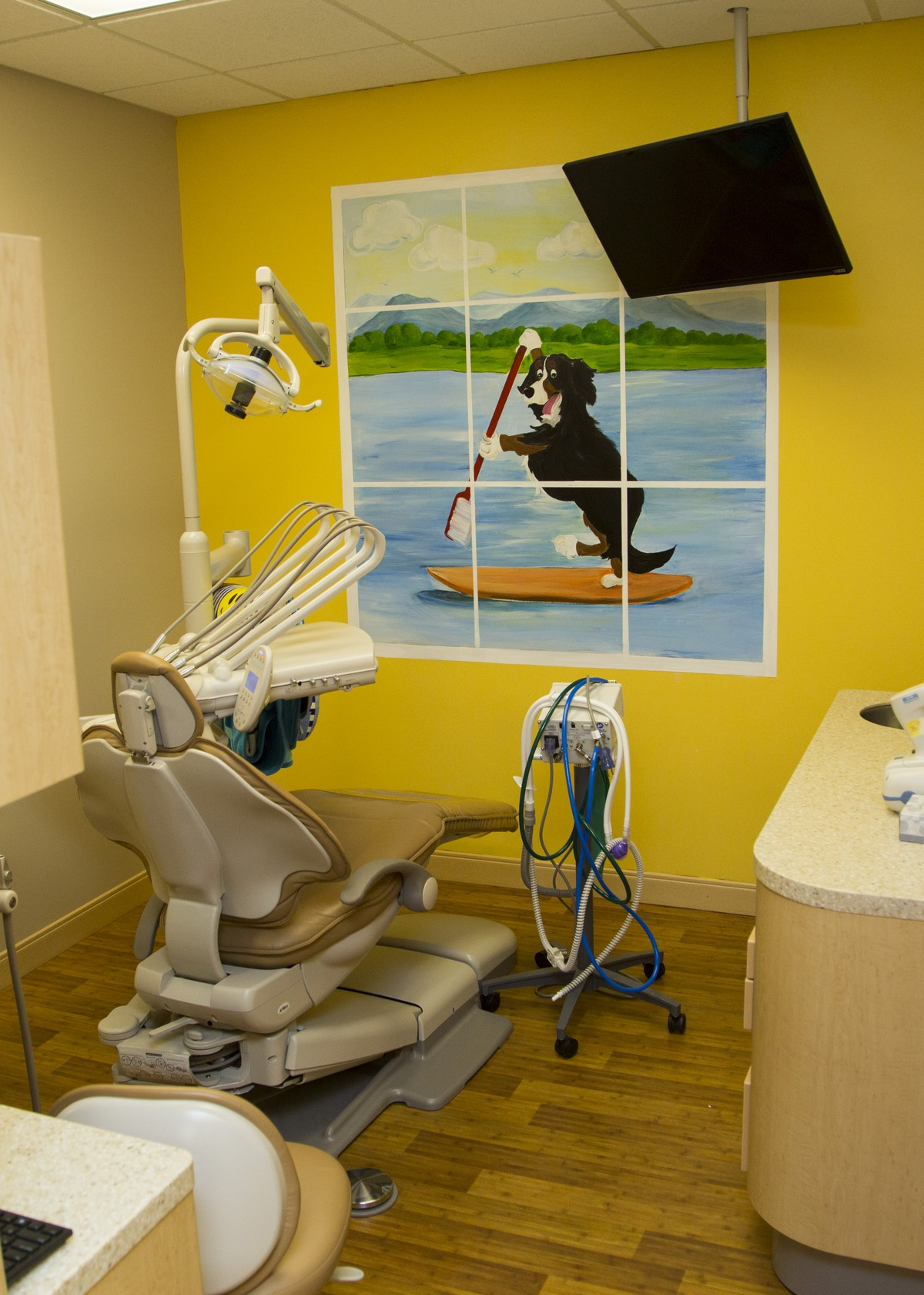 Hudson Valley Pediatric Dentistry Dental Room