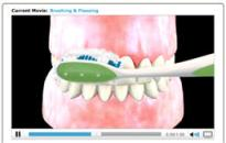 Animation of Teeth and Gums with teeth being brushed