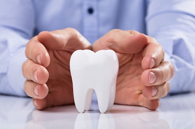 Large Tooth on table