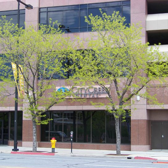 City Creek Dental