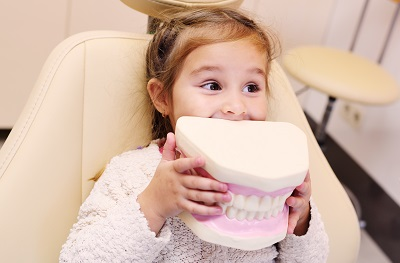 little girl holding dental model